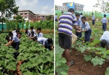Sharada Vidyanikethana Public School
