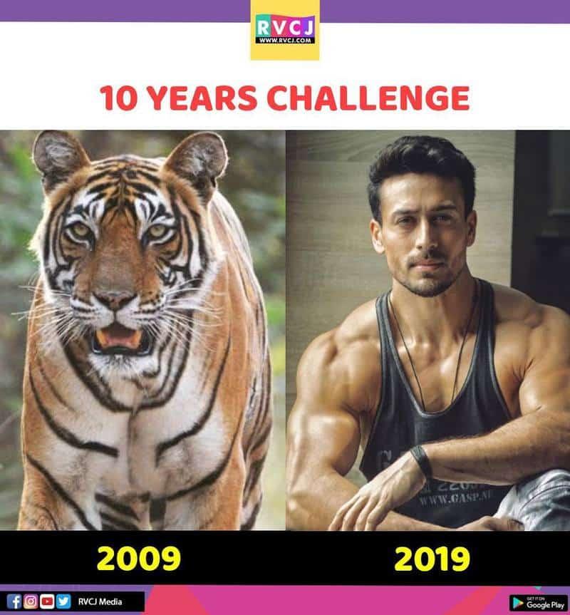 3. Tiger Shroff