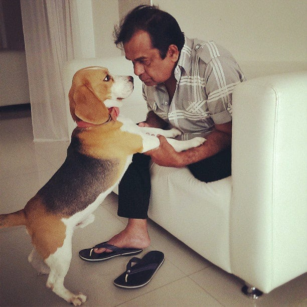 7. Animal lover -playing with his pet in home
