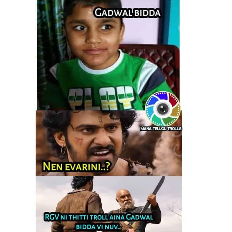 9. Gadwal Kid