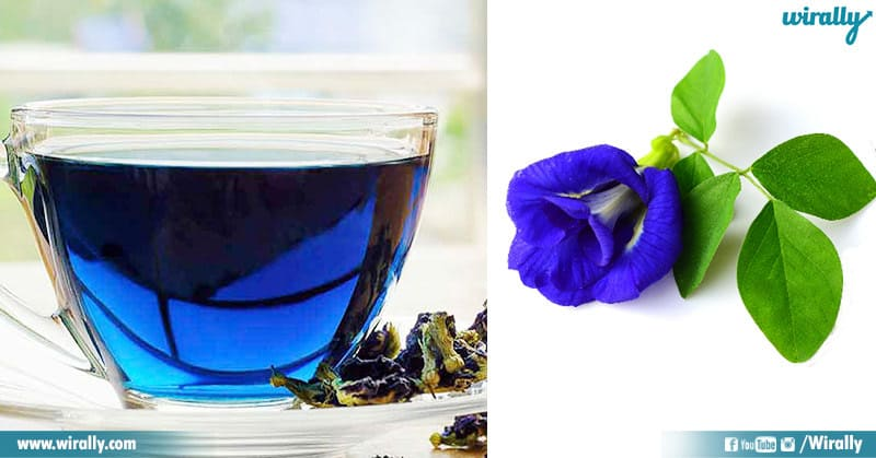 Blue Tea And Its Benefits