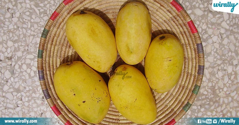 Popular Varieties of Mangoes