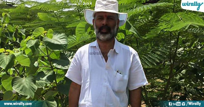5-RK nair plants