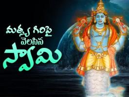 Lord Maha Vishnu Rare Temple