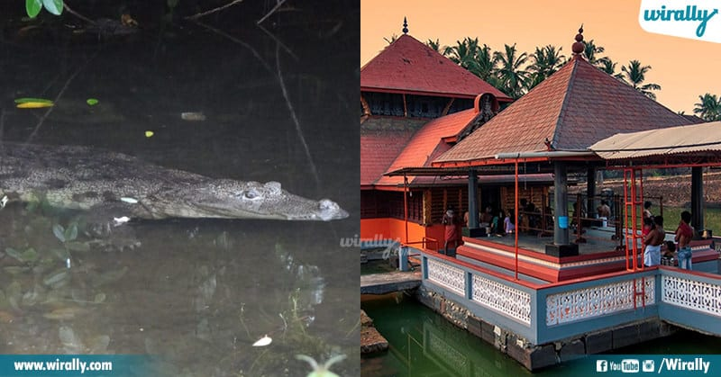 Mystery Behind Anantha Padmanabha Swamy