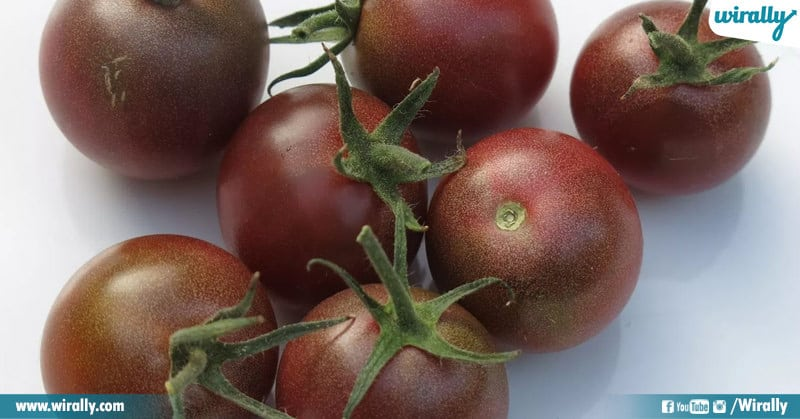 Varieties Of Tomatoes
