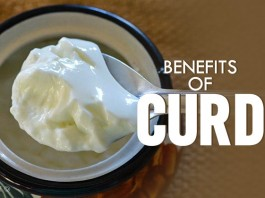 Health Benefits of Curd