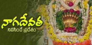 Kukke Shri Subrahmanya Temple