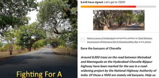Banyan Trees Activist Uday Krishna