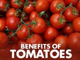 Health Benefits of Tomatoes - Web