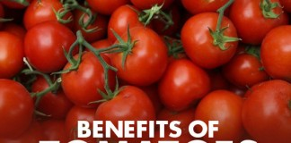 Health Benefits of Tomatoes - Web