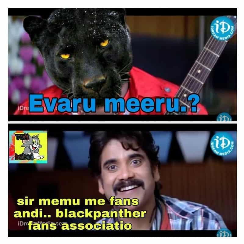 10. Panther Memes
