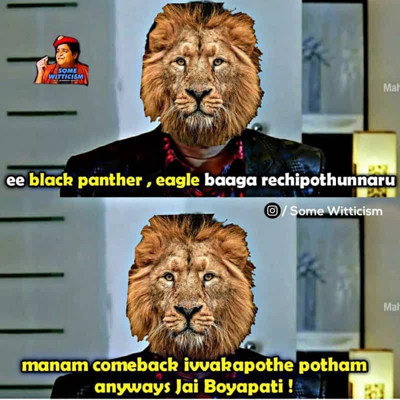 13. Panther Memes