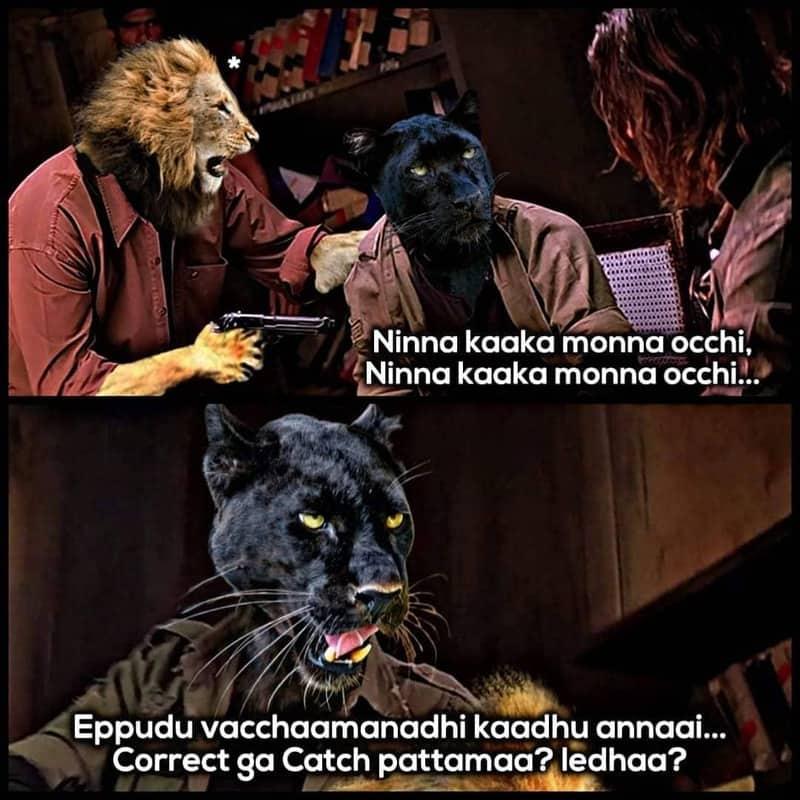 3. Panther Memes
