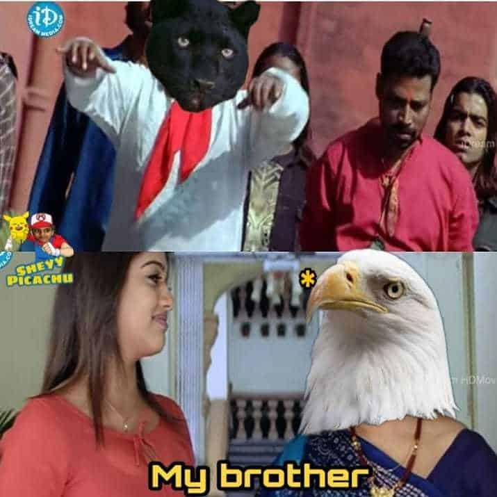 4. Panther Memes