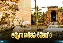 Kapila Shiva lingam