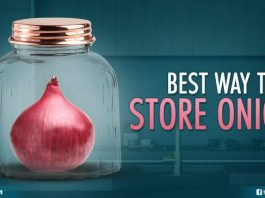 Way To Store Onions