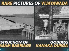 Organic Photos Of Vijayawada