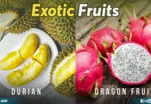 Exoctic Fruits
