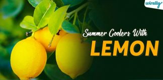 Summer Coolers With Lemon