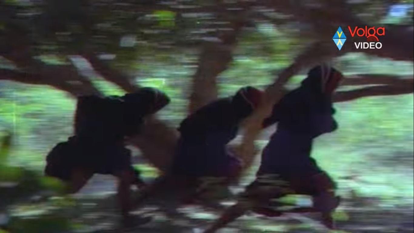 5. Anveshana Old Movie