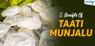 Benefits Of Taati Munjalu