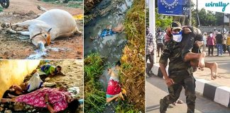 These Horrible Pics & Videos From Venkatapuram Gas Leak Are The Most Heartbreaking You Wll See Today (1)