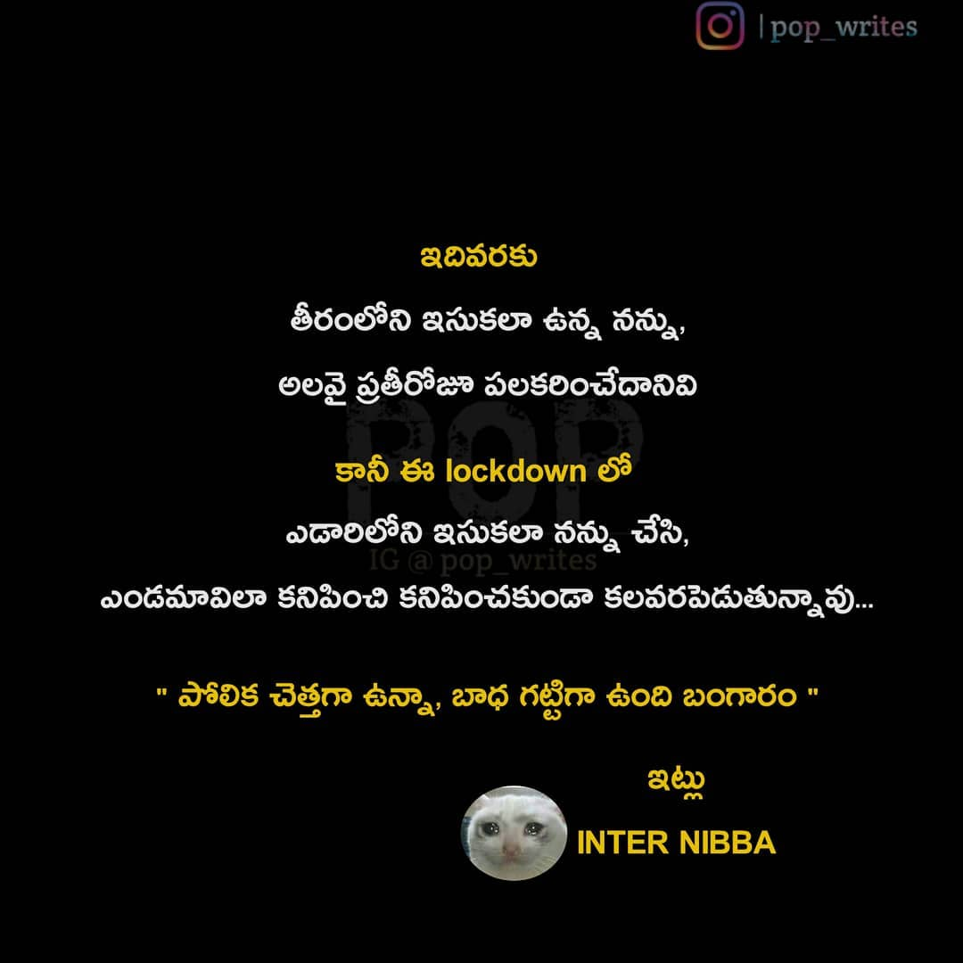11. Pop Telugu Quotes