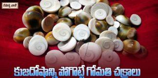 గోమతిచక్రాన్ని