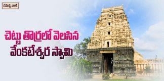 Chintala Venkataramana Swamy