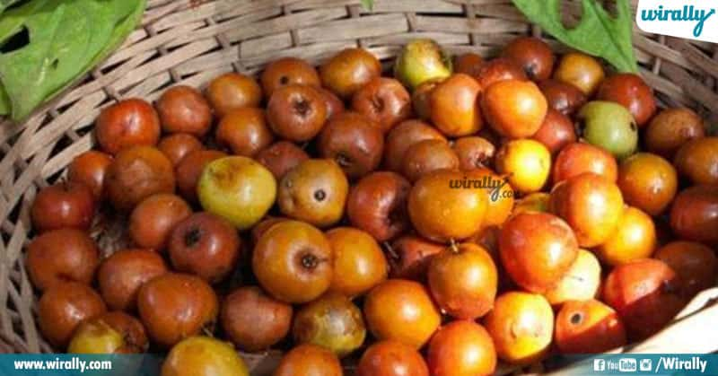 3 Fruit Capitals Of India