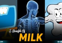 5 Benefits Of Milk