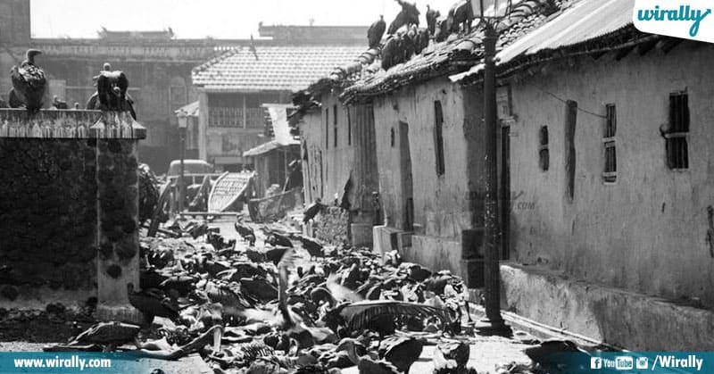 7 Bengal Famine