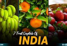 Fruit Capitals Of India