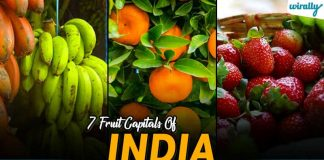 Fruit Capitals Of India