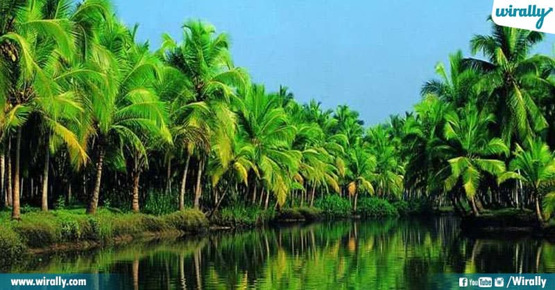 1 Unknown Facts About Kerala