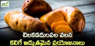 Health Benfits Of Sweet potato