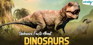 Unknown Facts About Dinosaurs