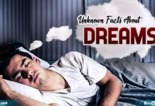 Unknown Facts About Dreams