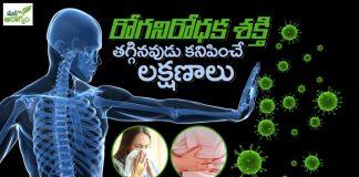 Immunity Power