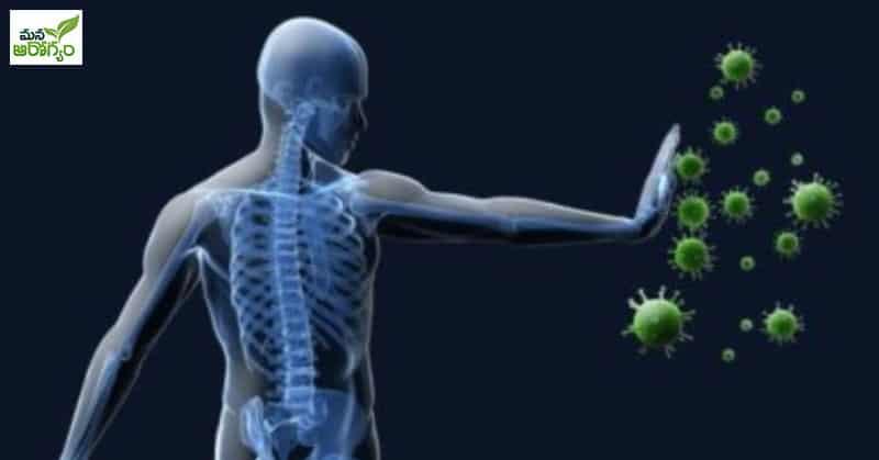 Health Benefits of Spearmint