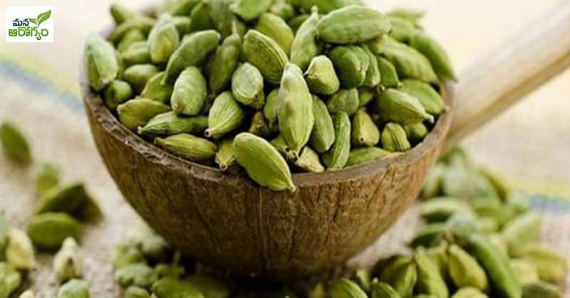 Health Benefits of Elachi