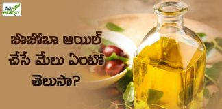 Health Benfits of Jojoba oil