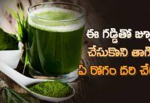 health benefits of drinking wheatgrass juice