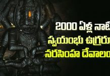 Unknown Facts About Ahobilam Temple