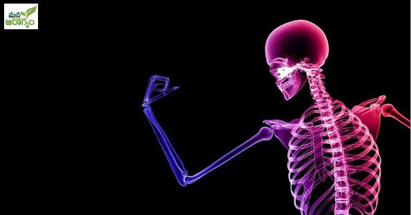Diet for Healthy bones