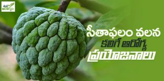 health benefits of seethapalam