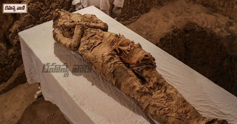 Unknown Facts About Egypt mummy