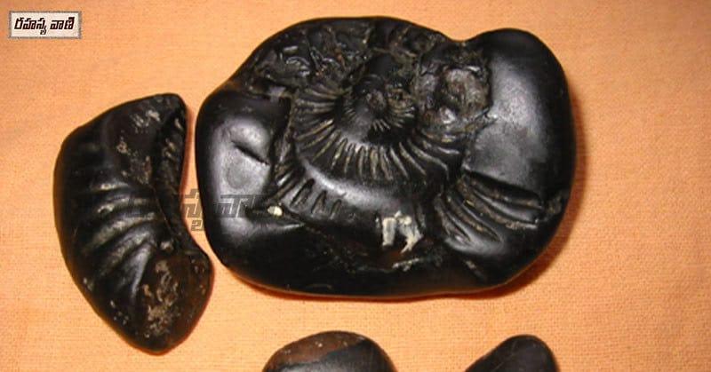 సాలగ్రామ