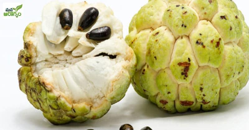 Health Benefits Of Wild sweetsop